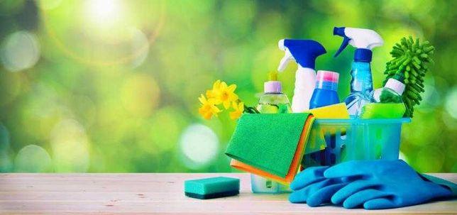 Empregada Doméstica - Limpezas Gerais