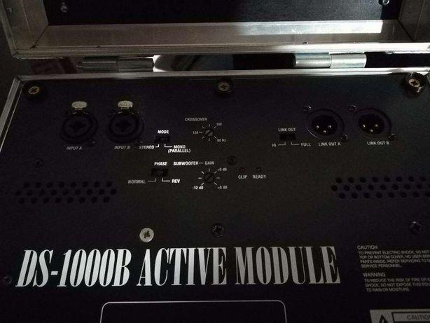Moduł basowy Szeptycki DS 1000B, (nie pol audio, granat, bayor) 1000 W