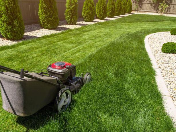 Usługi ogrodnicze , pielęknacja ogrodu, koszenie trawy.