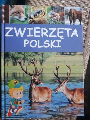 """""""Zwierzęta Polski"""". Edukacyjna książka dla dzieci"""