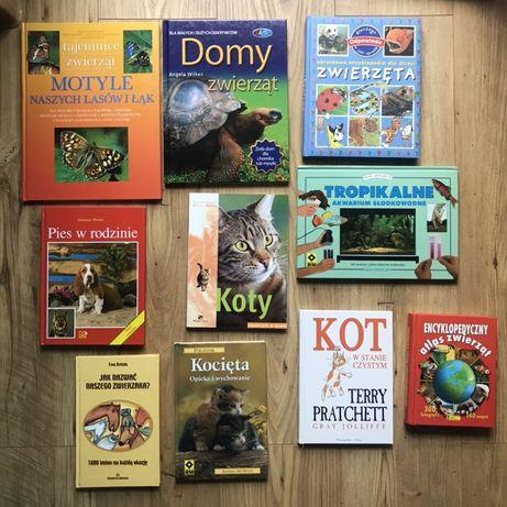 Zestaw książek dla dzieci o zwierzętach - 10 sztuk