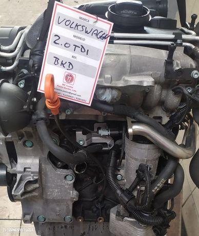 Motor Volkswagen 2.0TDI 140cv BKD Golf V Seat Leon Audi A3 Octavia