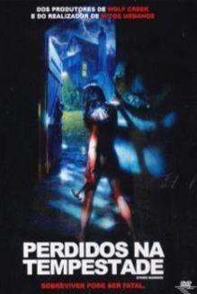 DVD Perdidos na Tempestade