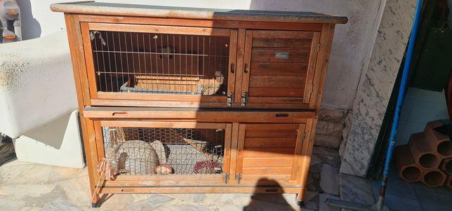 Casa/gaiola coelho 2 pisos