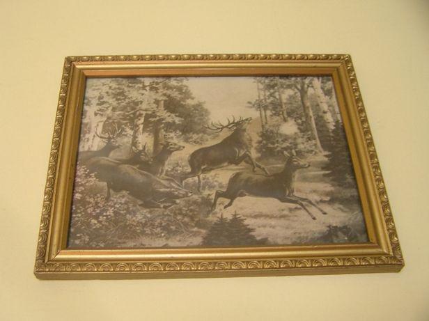 Stare obrazek/obrazki na ścianę