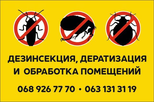 Уничтожим тараканов . Борьба с насекомыми блохи клопы тараканы