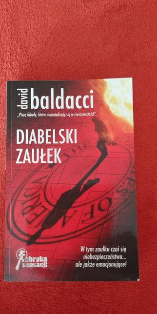 Diabelski zaułek, David Baldacci