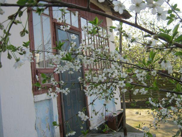 Продам будинок в Веселиново