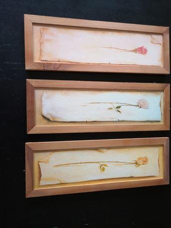 Obrazki trzy róże