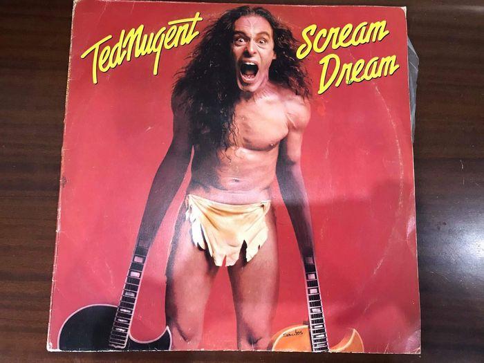 Disco de vinil Ted Nugent: Scream Dream Paços de Ferreira - imagem 1