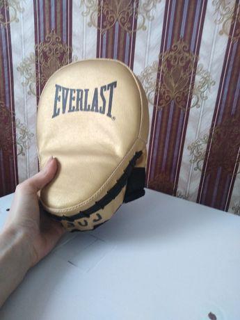 лапа  EVERLAST для бокса, тхэквондо