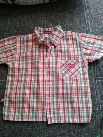 Рубашка с коротким рукавом рост 98 см
