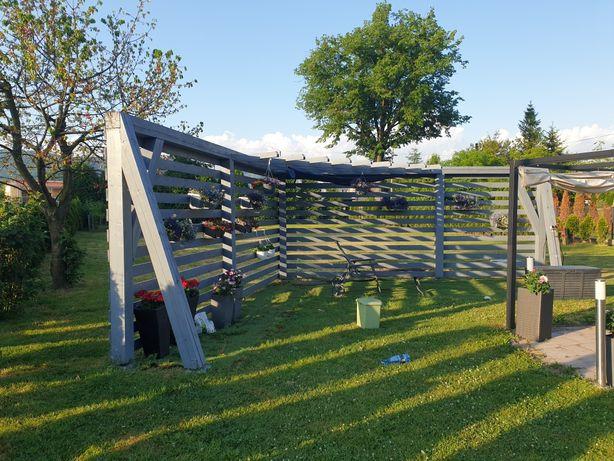 Pergola ogrodowa tarasola