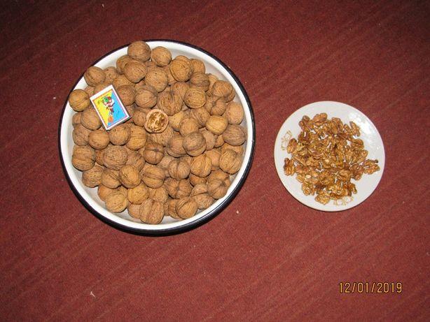 Орехи грецкие цельные. бабочка