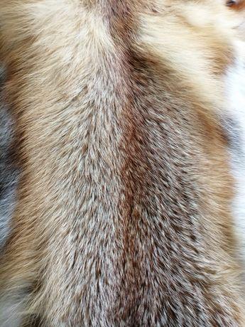 Шкіри лисиці. Шкуры лисиця. Мех лисы.