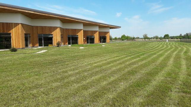Koszenie trawników trawy usługi ogrodnicze wycinka drzew Bochnia