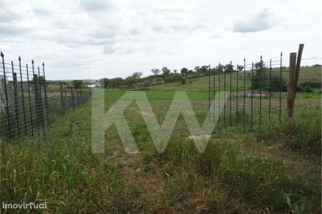 Terreno Agrícola - Venda - Aldeia de Palheiros, Ourique