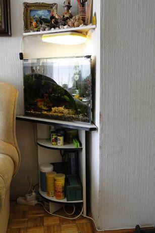 Akwarium używane trójkątne z szafką