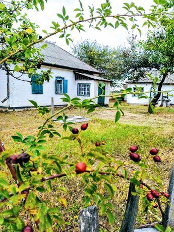Продам дом в селе Драговка Царичанского района