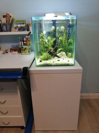 Akwarium Aquael 49l wraz z szafką