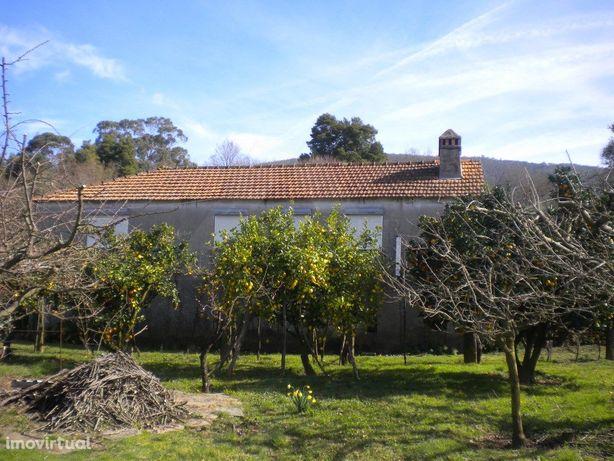 Quintinha c/ casa em xisto p/ restauro em Caminha