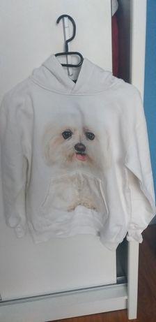Bluza Tulzo na wiek 11-12 lat