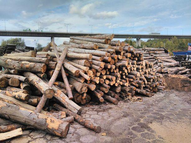 Drewno opałowe / kominkowe buk sezonowane 2- letnie BIELSKO - BIAŁA