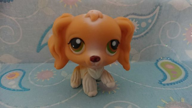 Oryginalny Littlest Pet Shop Piesek Spaniel 79 bis