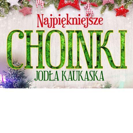 Choinka! Zamów żywą choinkę bez wychodzenia z domu