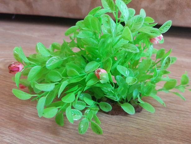 Sztuczna roślinka do akwarium firmy Zolux
