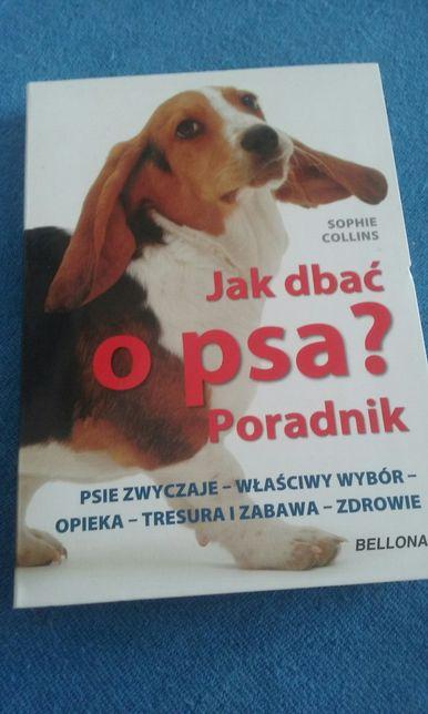 Jak dbać o psa ?
