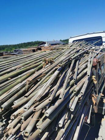 Kije bambusowe- podporki do roslin
