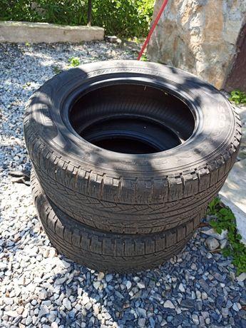 Шини Pirelli Scorpion 255/60 R17