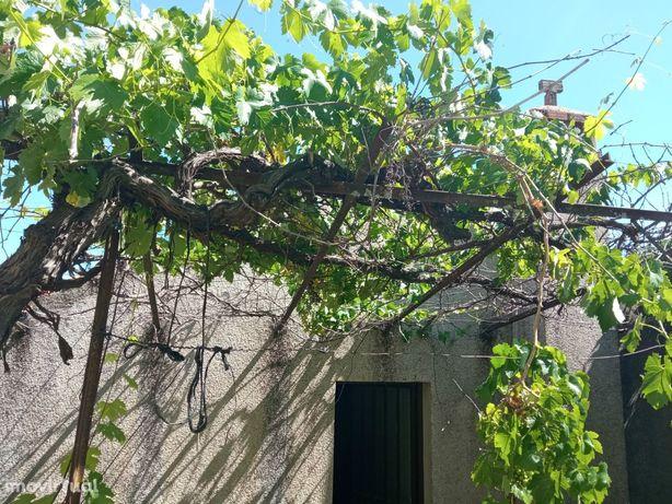 Moradia Geminada T7 Venda em Aranhas,Penamacor