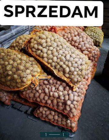 Ziemniaki paszowe, odpadowe