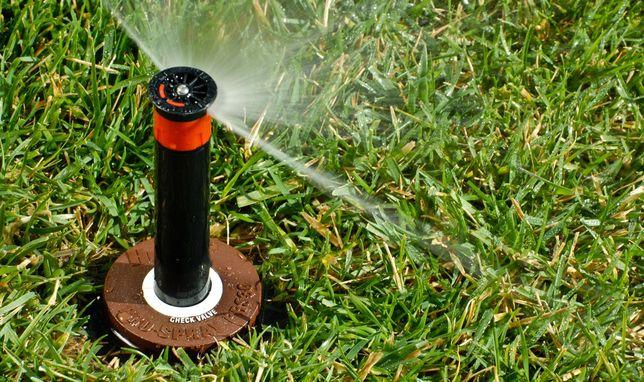 Ładny trawnik automatyka nawadnia ogrodu