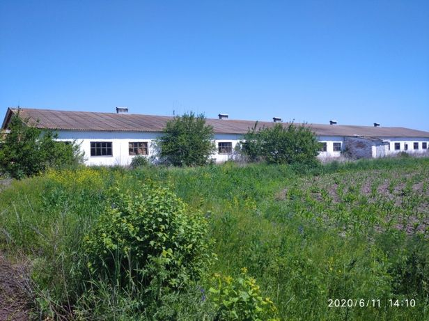 Ферма с. Круподеренці, Оржицький район, Полтавська область