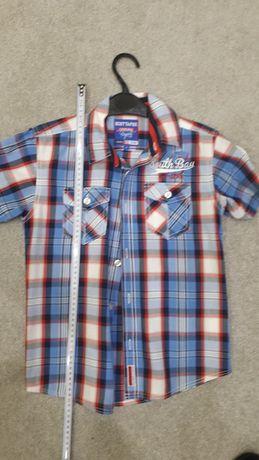 koszula dla dziecka 140 142 rozmiar 143 146 SCOTT AND FOX USA