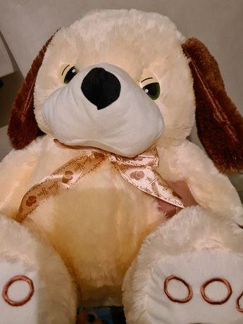 Duży pies, piesek, pluszak, maskotka ;-) Nowy