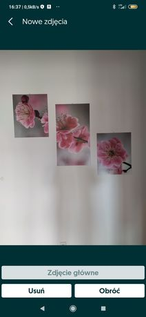 Obraz trzy częściowy