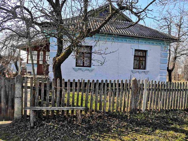 Продам будинок в селі Рудня