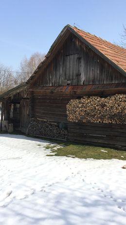 Belki z domu drewnianego