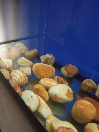 Акваріумні камінці природні