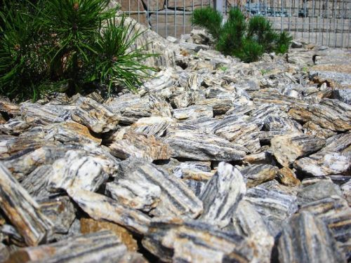 Kora Kamienna Kruszywo ozdobne gnejs sosnowa kamień do ogrodu ogrodowy