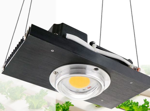 Panel Led 100W CREE CXB3590 do uprawy roślin