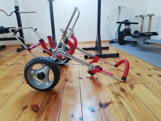 Wózek rehabilitacyjny dla psa