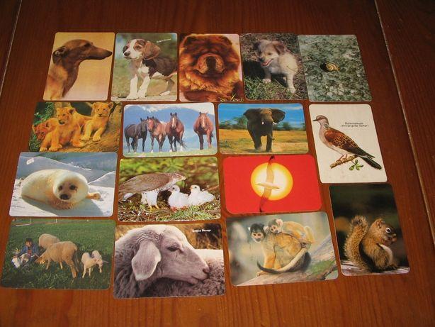 Calendários de bolso tema animais (84 todos diferentes)
