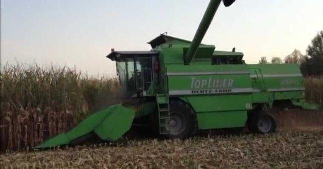 Usługi rolnicze , Koszenie zbóż, rzepaku, kukurydzy na ziarno,