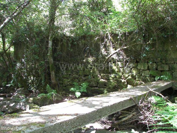 Moradia em Queimadela com moinho para reconstruir