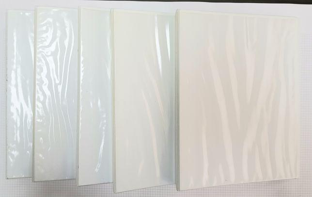 Conjunto de 5 pastas A4 ESSELTE brancas